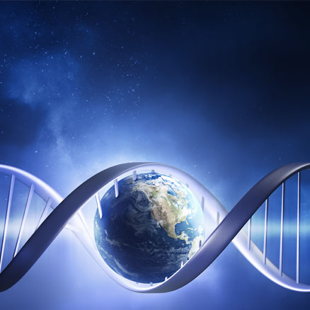 DNA test - paternity, relationship, forensic or genealogy test fast and reliable